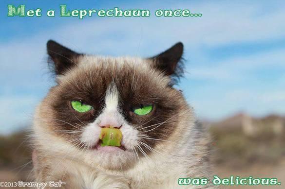 Grumpy cat ate a leprechaun