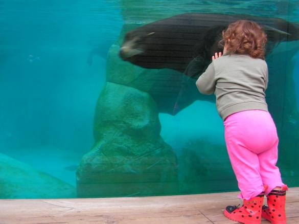 Zoos are fun for ki